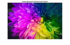 شبیه سازی اصلاح تصاویر برای افراد کور رنگ با متلب
