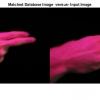 شبیه سازی تشخیص زبان اشاره به کمک الگوریتم تطبیق الگوی نقطه با متلب