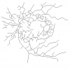 شبیه سازی ثبت تصویر شبکیه چشم بر اساس ویژگی با متلب