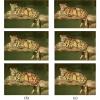 شبیه سازی مقاله قطعه بندی تصویر با استفاده از خوشه بندی فازی با متلب