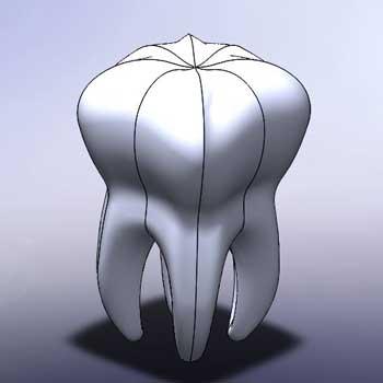 طراحی و مدلسازی دندان با سالیدورک